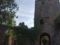 20140510-L'Ovac Vell_04