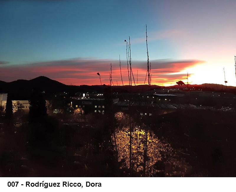 2_0007-rodriguez-ricco-dora