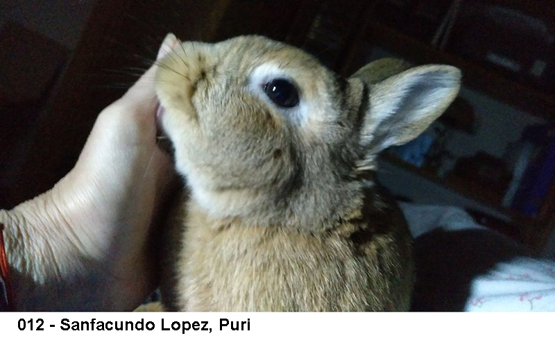 2_0012-sanfacundo-lopez-puri