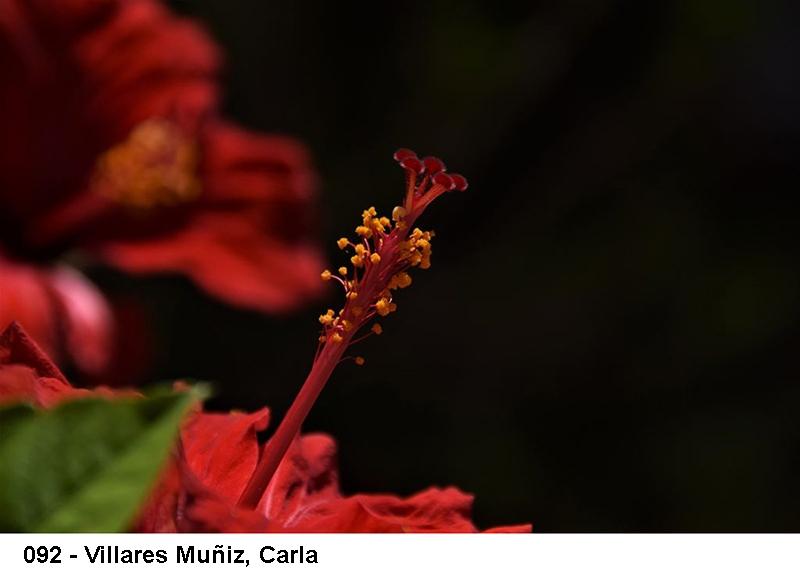 2_0092-villares-munyiz-carla