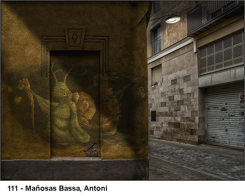 2_0111-manyosas-bassa-antoni