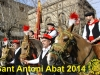 2014-sant-antoni-abad